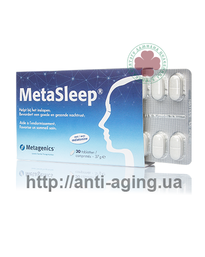 MetaSleep / МетаСлип